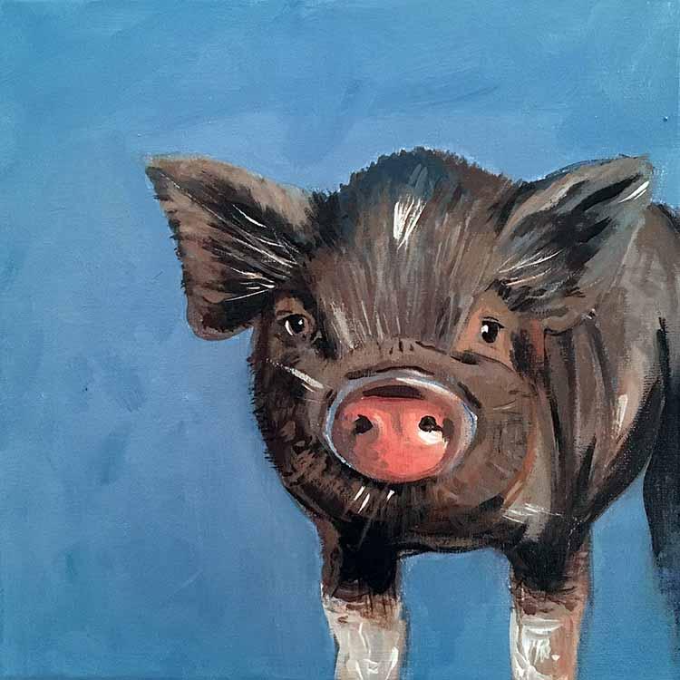Theos Schwein